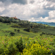 Stock Photo: Distant view of Pienza