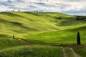 Blick auf die malerische landschaft der toskana — Stockfoto