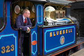 Bluebell Steam Engine at Sheffield Park Station — Stockfoto