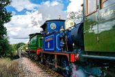 C Class and Bluebell Steam Engines Leaving Sheffield Park Statio — Foto Stock