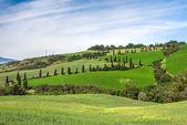 Scenery Val d'Orcia Tuscany — Stock Photo