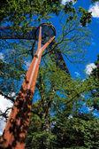 Treetop walkway at Kew Gardens — Stock Photo