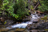 Holland Creek — Stock Photo