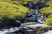 Rapids in Glacier National Park next to the Going to the Sun Roa — Stock Photo