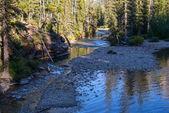 Saint Mary River — Stockfoto