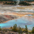 Norris Geyser Basin — Stock Photo #39377205