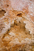 Mammoth Hot Springs — Fotografia Stock