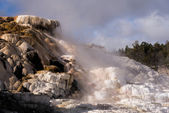 Mammoth Hot Springs — Stock Photo