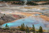 Norris Geyser Basin — Stock Photo
