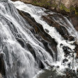 Gibbon Falls — Stock Photo #39382833