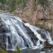 Gibbon Falls — Stock Photo #39383251