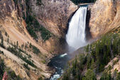 Lower Yellowstone Falls — Foto Stock