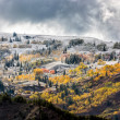 Stock Photo: Autumn Colours in Wyoming