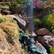 Colourful autumn foliage and waterfall in Zion — Stock Photo