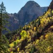 Zion National Park Utah in autumn — Stock Photo