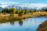 Autumnal Colours in the Grand Teton National Park — Stock Photo