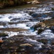 Rapids Along Virgin River — Stock Photo #39401777