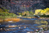 Virgin River Zion National Park — Stock Photo