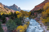 Winter sunshine along the Virgin River valley — Foto Stock