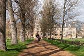 Uma visão para baixo de uma árvore forrado Avenida para um dos co de Universidade de oxford — Fotografia Stock