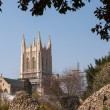 Stock Photo: A view of Bury St.Edmunds cathedral being restored