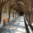 Cloisters at Norwich Cathedral — Stock Photo