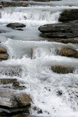 Rapids on the Athabasca River in Jasper National Park — Photo