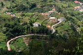 View of a winding road through the Madeira landscape — Stok fotoğraf