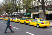 Taxi rank in Funchal Madeira — Stock Photo