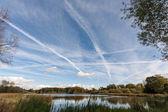 View over Warnham Nature Reserve — Stock Photo