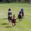 Point to point racing at Godstone Surrey horse — Stock Photo #40673981