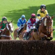 Point to point racing at Godstone Surrey — Stock Photo #40674079