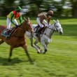 Point to point racing at Godstone Surrey horse — Stock Photo #40674183