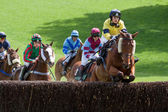 Point to point racing at Godstone Surrey — Stock Photo