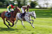 Point to point racing at Godstone Surrey horse — Stock Photo