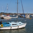 Stock Photo: Jupiter yacht motoring into Wells