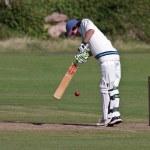 Playing cricket on the green at Bamburgh — Stock Photo