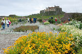 View of Lindisfarne Castle from the gardens — Foto Stock