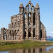 Whitby Abbey — Stock Photo #41065843