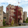 Stock Photo: Hever Castle