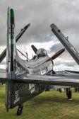 дуглас skyraider припаркован в гудвуде — Стоковое фото