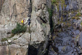 Rock climbing in Snowdonia — Stock Photo