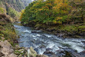 View along the Glaslyn River in autumn — Stock Photo