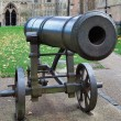 Stock Photo: Canon outside Ely Cathedral