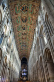 Interior view Ely Cathedral — 图库照片