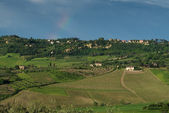 Tuscan countryside — Stock Photo