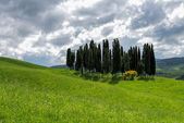 View of the scenic Tuscan countryside — Stock Photo