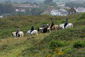 Horse riding in Bude — Stock Photo