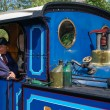 Stock Photo: Partial view Bluebell steam engine at Sheffield Park station