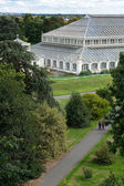 The Temperate House at Kew Gardens — Stock Photo
